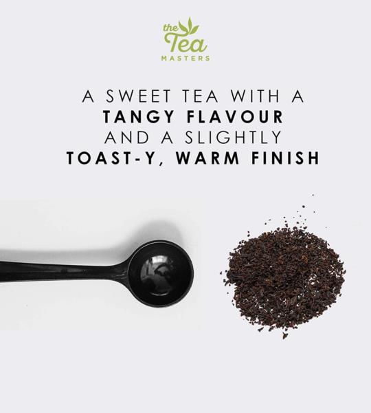 The Tea Masters Prism Teabags - Green Tea - Chun Mee (1x25) photo 6