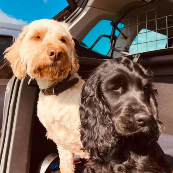 Meet our Heads Of Security Barney & Poppet